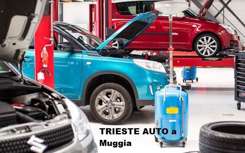 TRIESTE AUTO - garanzia SUZUKI